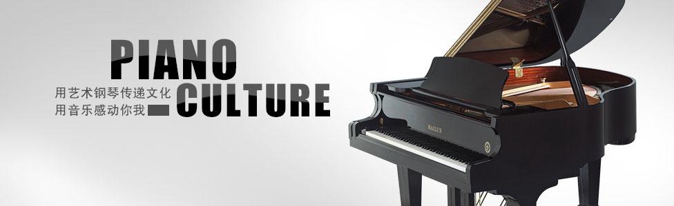 律动钢琴网